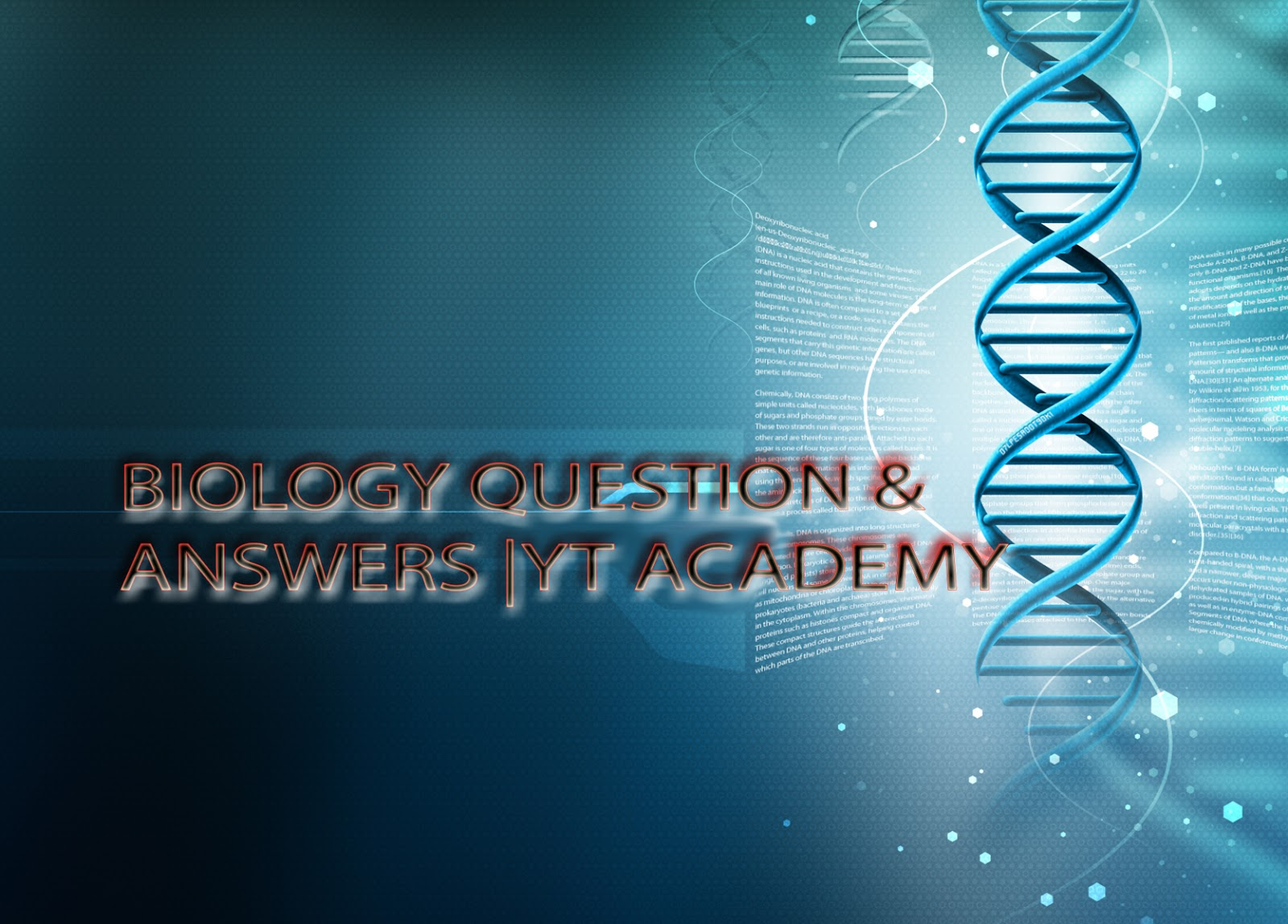 Frequently Asked Logical Questions and their Answer| YT