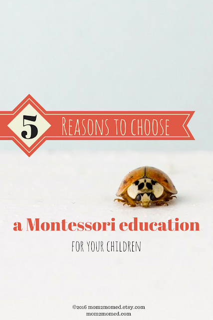 Mom2MomEd Blog: 5 reasons to choose a Montessori education for your children
