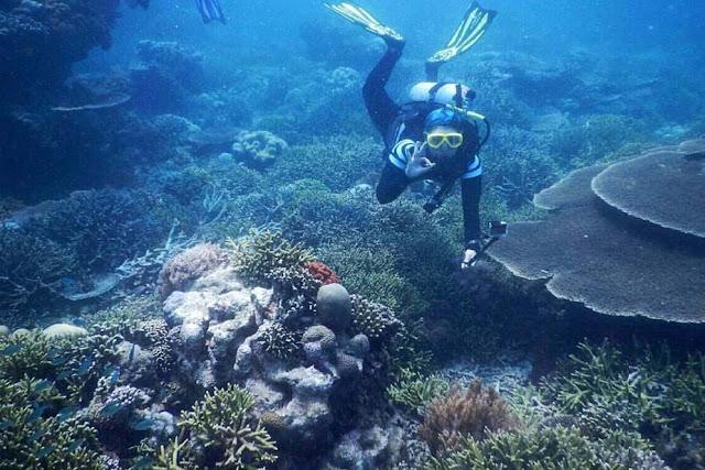 Terumbu Karang Pulau Kera