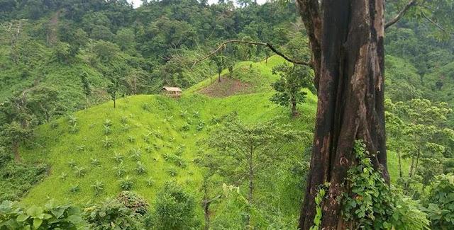 Lama Bandarban Tourist Spot