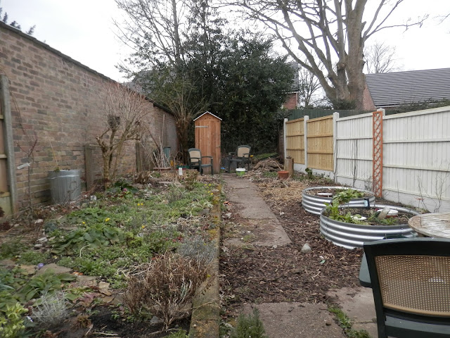 Diary of a Permaculture (ish) garden, March 2018.  From UK garden blogger secondhandsusie.blogspot.com #gardenblogger #permaculturegarden #suburbanpermaculture #urbanpermaculture #organicgarden #ukpermaculture