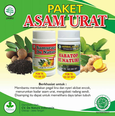Obat Rematik dan Asam Urat