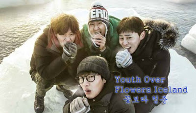 Youth Over Flowers Iceland