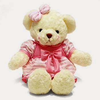 Gambar boneka teddy bear pakai baju pink