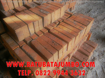 supplier batu bata jumbo super