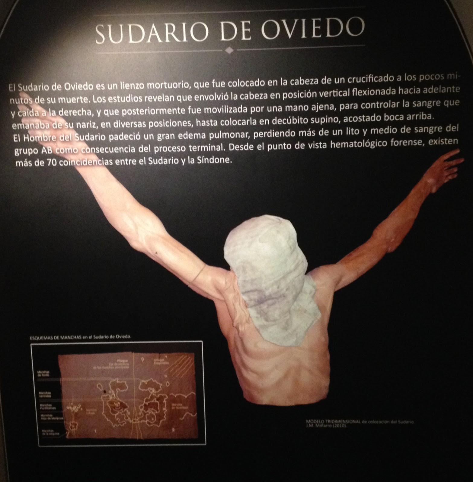 sudarium of oviedo blood type