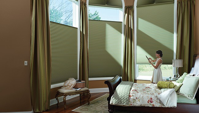 Automatic motor window blinds