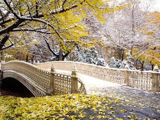 central-park-en-new-york