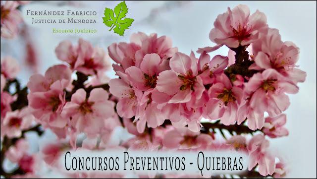 Concurso Preventivos - Quiebras