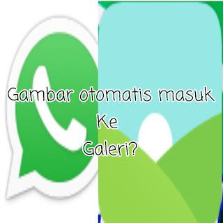 Foto WhatsApp Tidak Otomatis Tersimpan Di Galeri