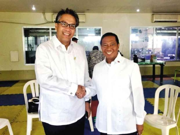 Political rivals. Roxas was beaten by Binay in the 2010 vice presidential election