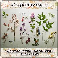 http://skrapnutyie.blogspot.com/2016/04/0204-0105.html