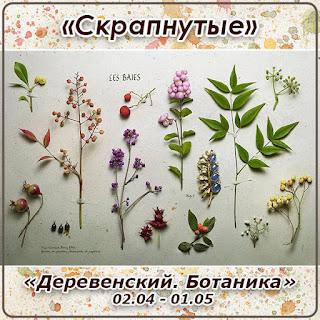 http://skrapnutyie.blogspot.ru/2016/04/0204-0105.html