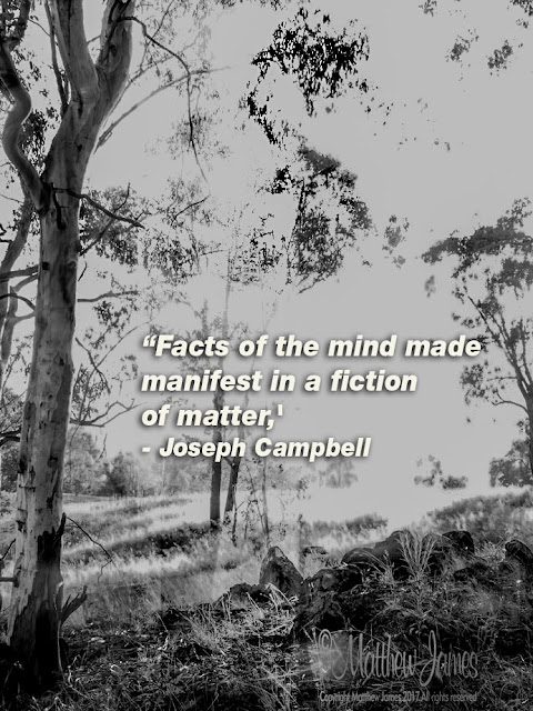 'Facts of the mind made manifest in a fiction of matter' - Joseph Campbell