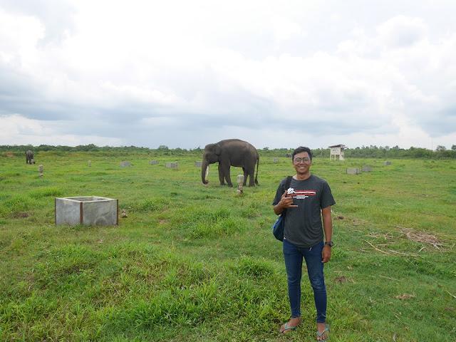 Way Kambas, Lampung Timur
