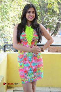 Telugu Actress Prasanna Stills in Short Dress at Inkenti Nuvve Cheppu Press Meet Stills  0124.JPG