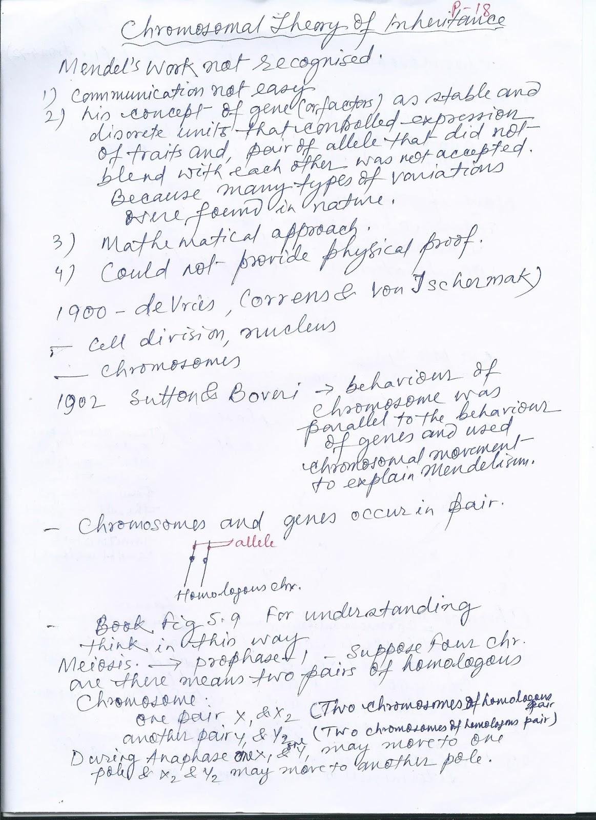Mandal S Desk Chromosomal Theory Of Inheritance Class Xii
