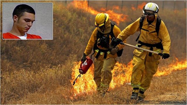 Gemblung! Lama Tak Padamkan Api, Eks Anggota Pemadam Ini Bakar Hutan Untuk Hilangkan Kebosanan