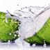 Air Kelapa Bisa Mengatur Kolesterol