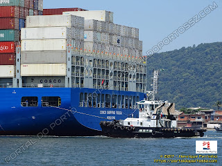 COSCO Shipping Volga e WS Gemini