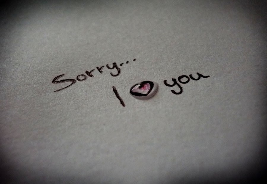 Sorry | I'm So Lonely...