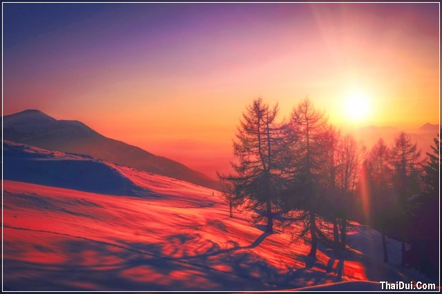 ảnh mặt trời mùa đông