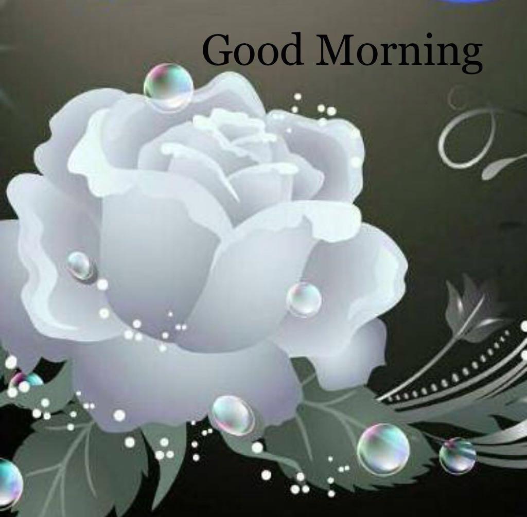 sweet good morning photo