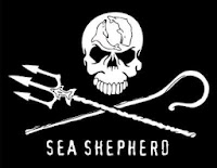 https://www.seashepherd.it/