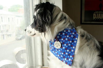 Patriotic Bandana with Space for Tags by KirasPetShop on Etsy