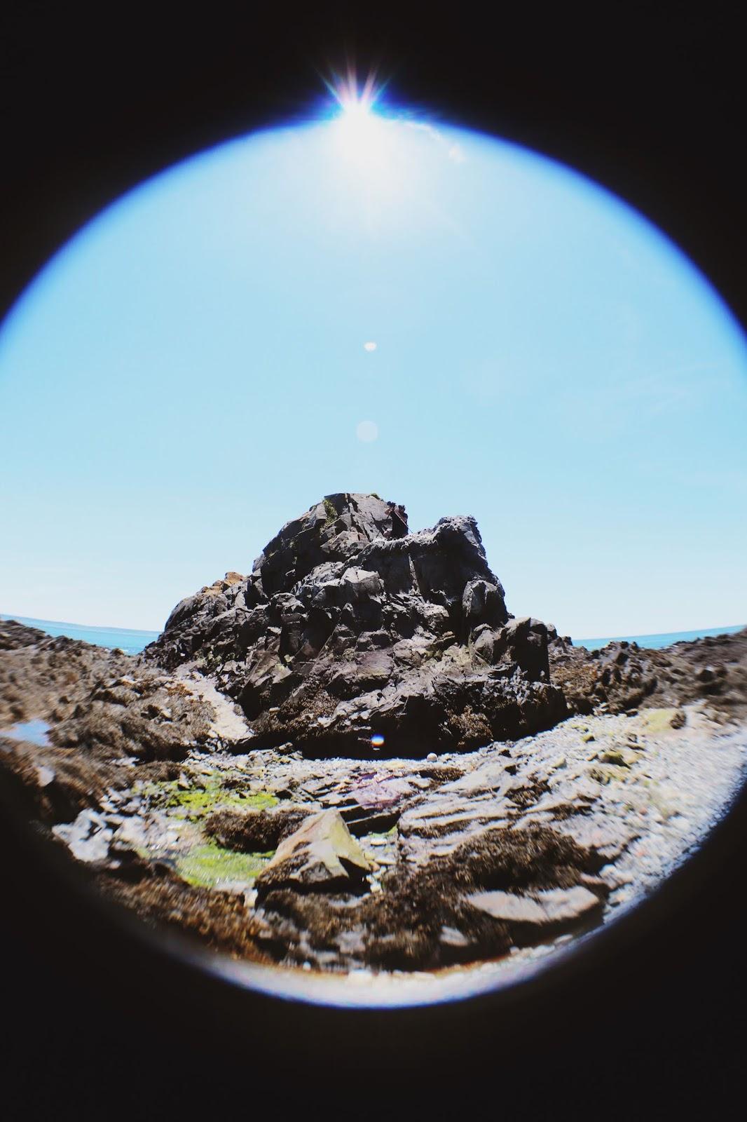 bold coast maine