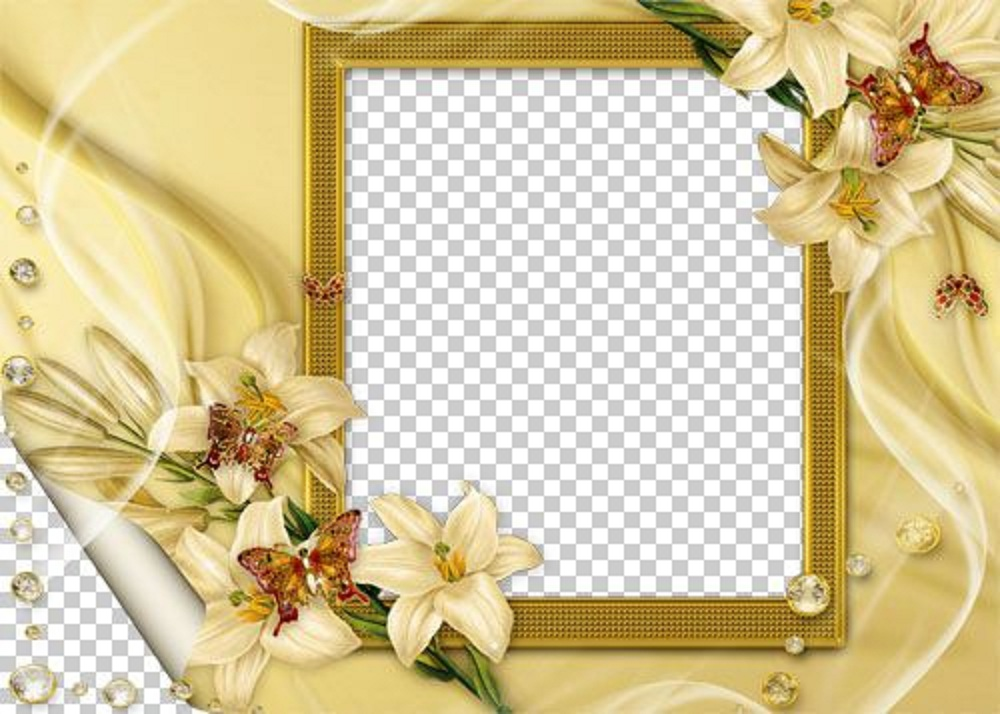 Dynamic Views: Beautiful Photoshop Frames Image Download