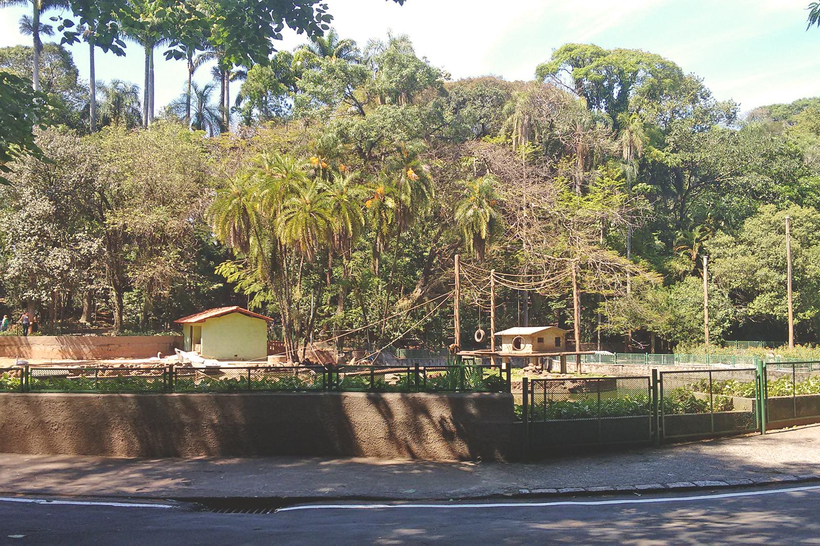 ruas bosque dos jequitibás campinas