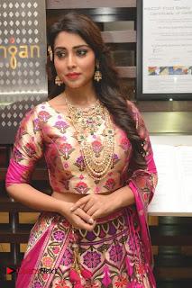 Actress Shriya Saran Pictures at The Wedding Vows Fashion Show  0001