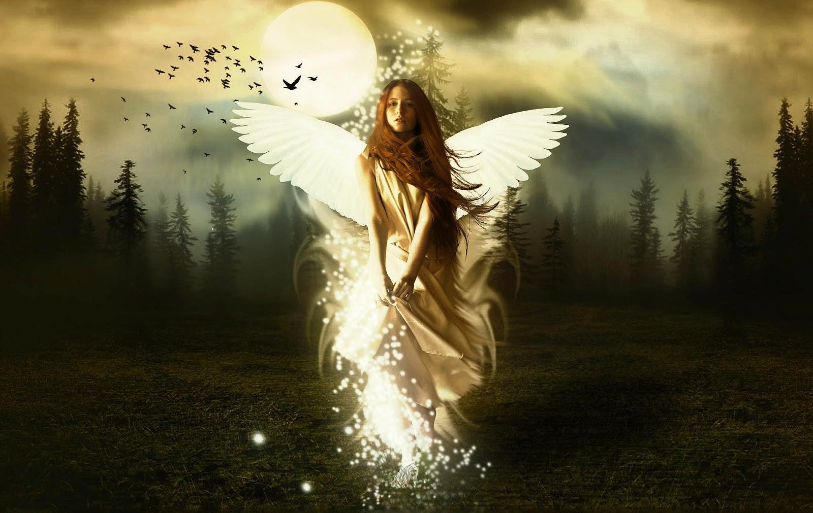 Mooie Engel Achtergronden Hd Wallpapers Angel Afbeelding Plaatje 10 Sn Wallpaper
