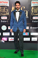 Celebs at IIFA Utsavam Awards 2017  Day 2  Exclusive Part 2 11.JPG