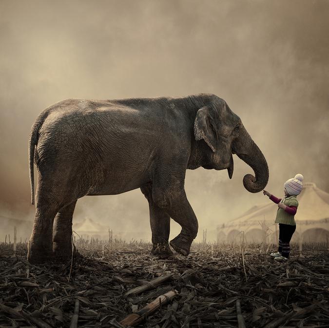 3d Car Wallpaper Apk Elephant And Little Girl By Caras ıonut Art Two