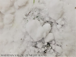 A Few Of My Favorite Things; Random Pictures, snow heart