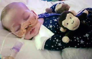 Charlie Gard's parents 'optimistic' after new brain scan and examination by US neurosurgeon