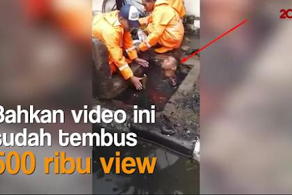 Kadis Kebersihan Kaget & Menyayangkan Lihat Video Pasukan Orange Menyelam di Gorong-gorong Penuh Sampah, Ini Alasannya