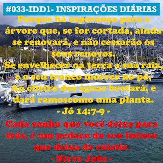 033-IDD1- Ideia do Dia 1
