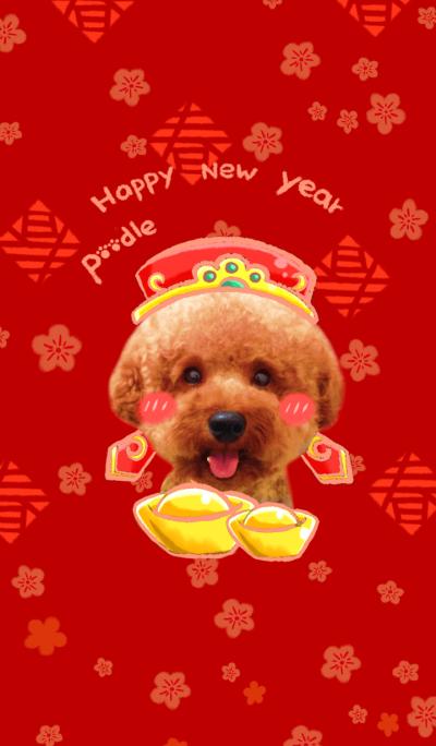 好運汪汪來!Happy new year!