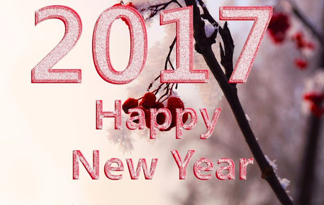 Happy New Year 2017 HD Wallpaper 8
