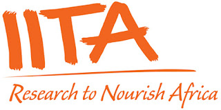 Job Opportunity at IITA TANZANIA, Monitoring & Evaluation Officer /Data Manager