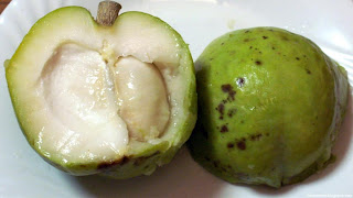 white sapote fruit images wallpaper