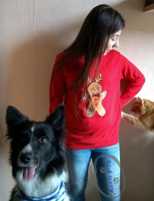 przerabianie ubrań blog, blog o zwierzętach