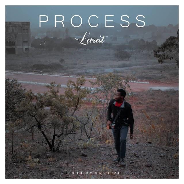LEOREST: PROCESS