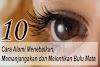 10 Cara Alami Menebalkan,Memanjangakan Dan Melentikan Bulu Mata