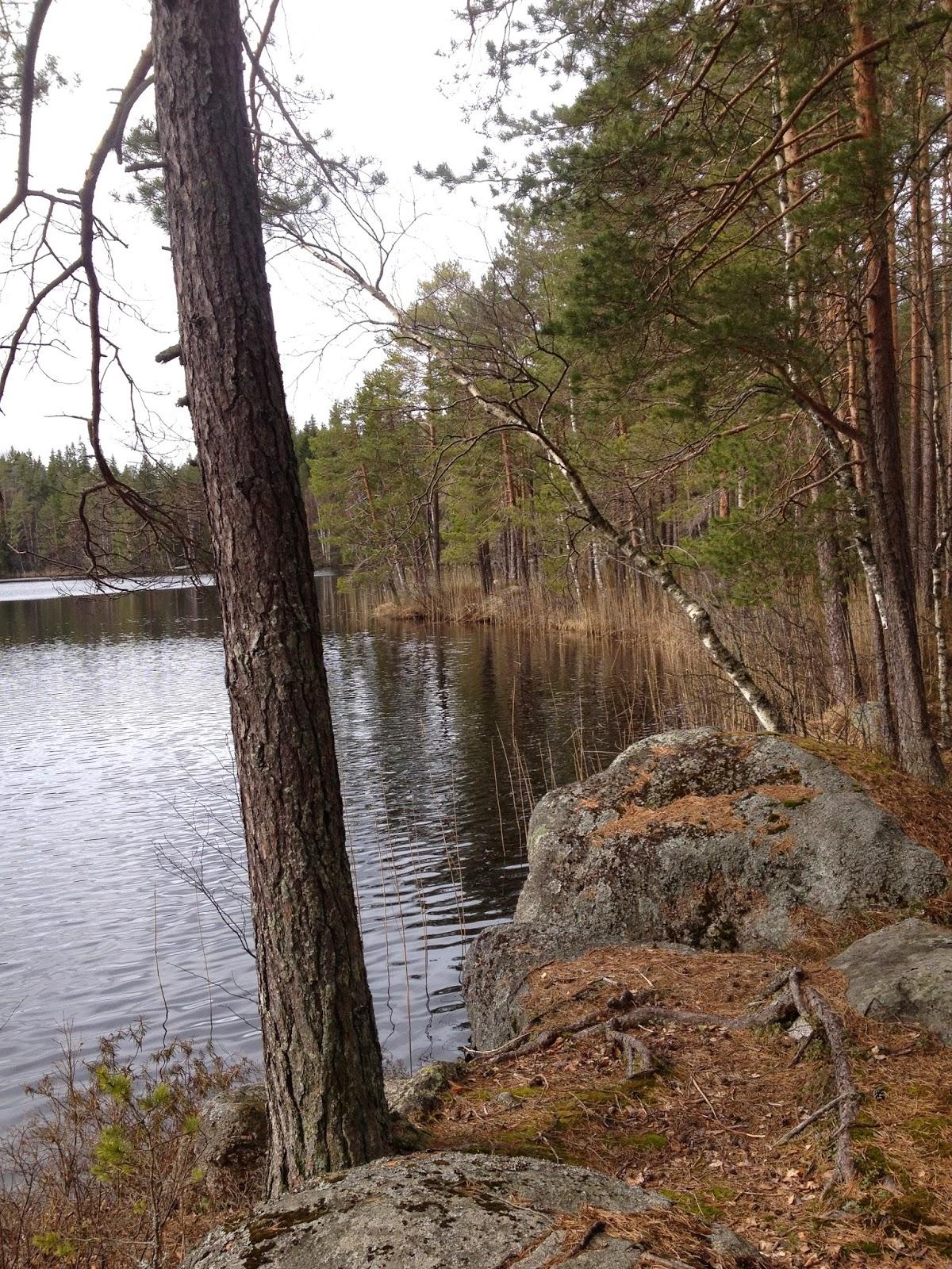 Ritajärvi