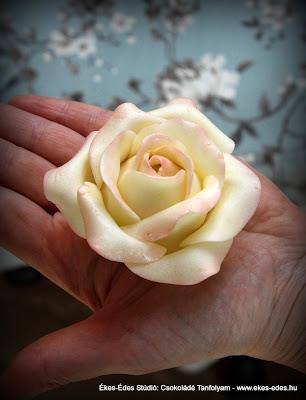 fehér csoki rózsa