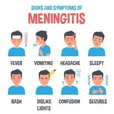 Hib Penyebab Penyakit Meningitis Menyerang